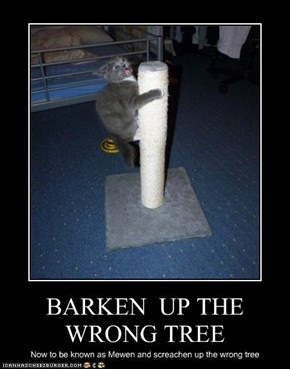 BARKEN  UP THE WRONG TREE