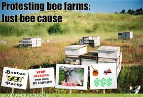 Protesting Bee Farms