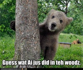 Guess wat Ai jus did in teh woodz.