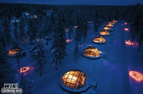 Glass Igloo WIN