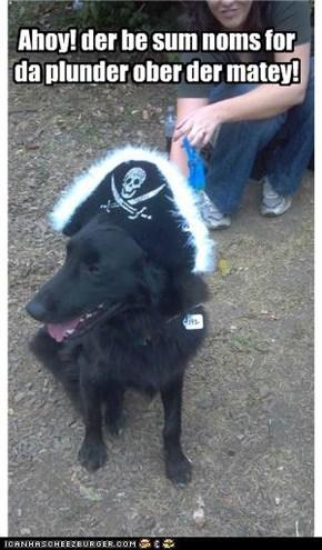 Ahoy! der be sum noms for da plunder ober der matey!