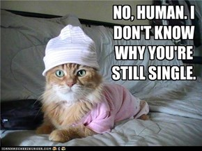 NO, HUMAN.