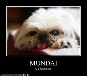 MUNDAI