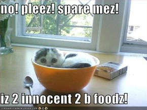 no! pleez! spare mez!  iz 2 innocent 2 b foodz!