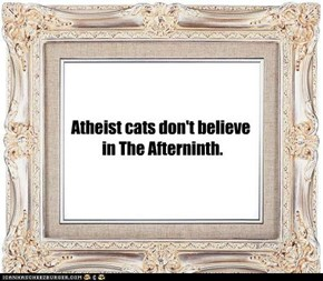 Atheist cats don't believe  in The Afterninth.