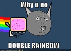 Why u no  DOUBLE RAINBOW