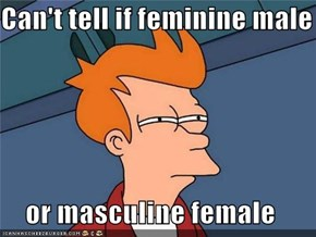 Can't tell if feminine male  or masculine female