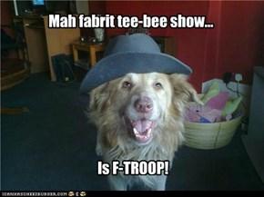 Mah fabrit tee-bee show...