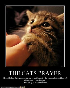 THE CATS PRAYER