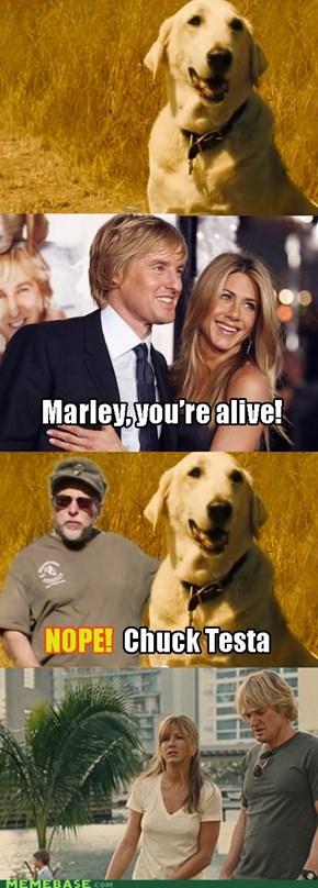 Marley & Chuck Testa