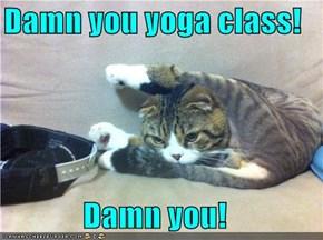 Damn you yoga class!