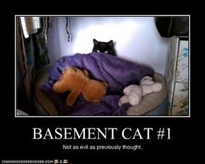 BASEMENT CAT #1