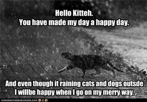 Hello Kitteh.You have made my day a happy day.