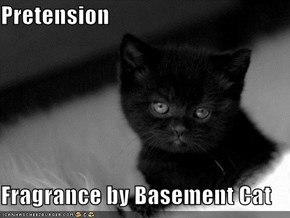 Pretension  Fragrance by Basement Cat