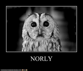 NORLY