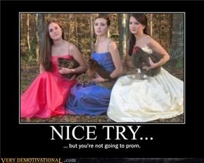 NICE TRY...