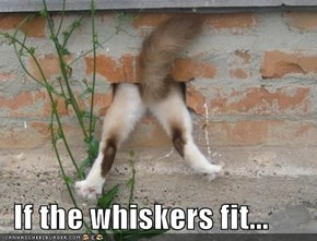 If the whiskers fit...