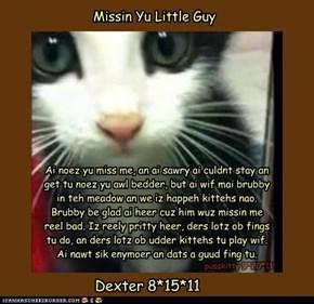 Missin yu little guy :'(
