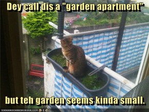 "Dey call dis a ""garden apartment""      but teh garden seems kinda small."