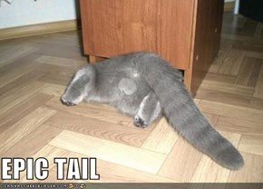 EPIC TAIL