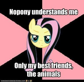 Nopony understands me