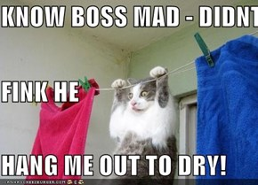 KNOW BOSS MAD - DIDNT  FINK HE  HANG ME OUT TO DRY!