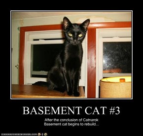 BASEMENT CAT #3