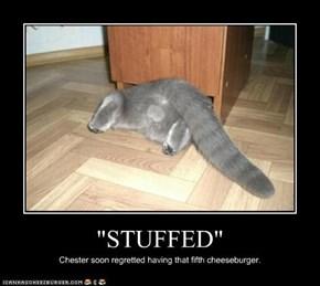 """STUFFED"""