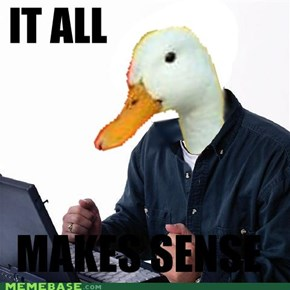 The duck was the noob all along!