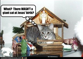 The Nativity Cat