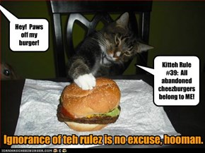 Kitteh Rule #39:  All abandoned cheezburgers belong to ME!