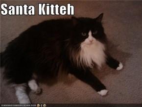 Santa Kitteh