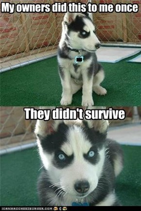 My owners did this to me once
