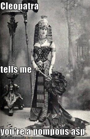Cleopatra tells me you're a pompous asp.
