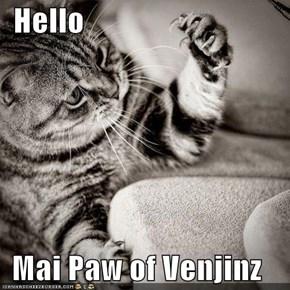 Hello  Mai Paw of Venjinz