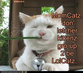 MomCatz, don' letcher kittenz gro up 2 be LolCatz,...