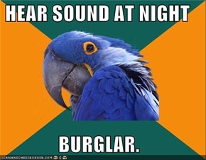 HEAR SOUND AT NIGHT  BURGLAR.