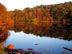 Happy Autumn! -- Main-Kinzig-Kreis, Hesse, Germany