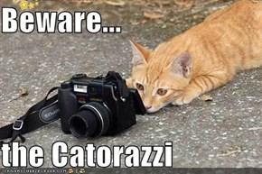 Beware...  the Catorazzi