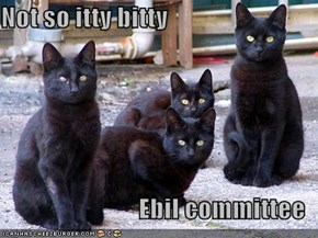 Not so itty bitty  Ebil committee