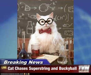 Breaking News - Cat Chases Superstring and Buckyball