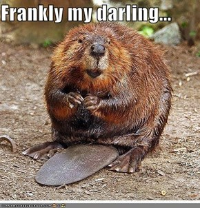 Frankly my darling...