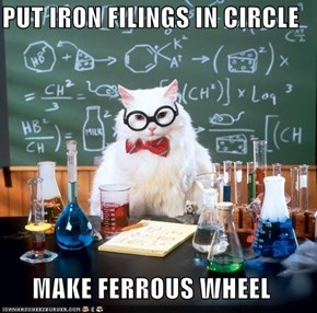 PUT IRON FILINGS IN CIRCLE  MAKE FERROUS WHEEL