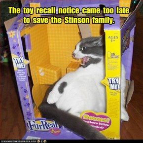 The  toy  recall  notice  came  too  late  to  save  the  Stinson  family.