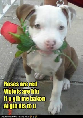 Roses are redViolets are bluIf u gib me bakonAi gib dis to u