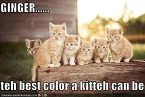 GINGER......  teh best color a kitteh can be