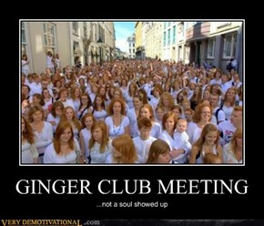 GINGER CLUB MEETING