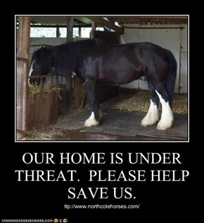 OUR HOME IS UNDER THREAT.  PLEASE HELP SAVE US.