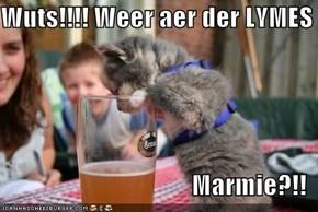 Wuts!!!! Weer aer der LYMES  Marmie?!!