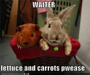 WAITER  lettuce and carrots pwease